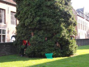 ecologische teambuilding Mechelen Green Feet